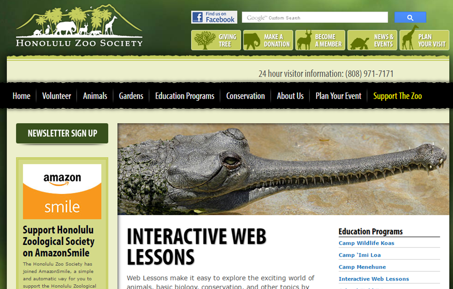 Zoo Web Lessons